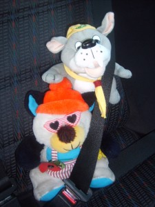 "SNAGGLES AND 'COOL CUB' IN CAR - ""Seat belt on and ready to go with my new friend 'Cool Cub'.  I wish I had borrowed his sunglasses for some of my trips""."