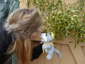 A Kiss from a lovely Explorer Scout under the mistletoe :-)
