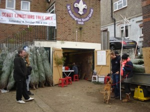1st Wallington Scout Group's HQ - The place for your Xmas Tree.