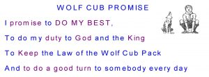 Wolf Cub Promise