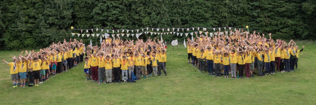 320 Cub Scouts into 100